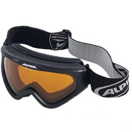 Alpina Skibrille Pro 2.0 DL