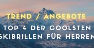 Top 4 Marken Herren Skibrille
